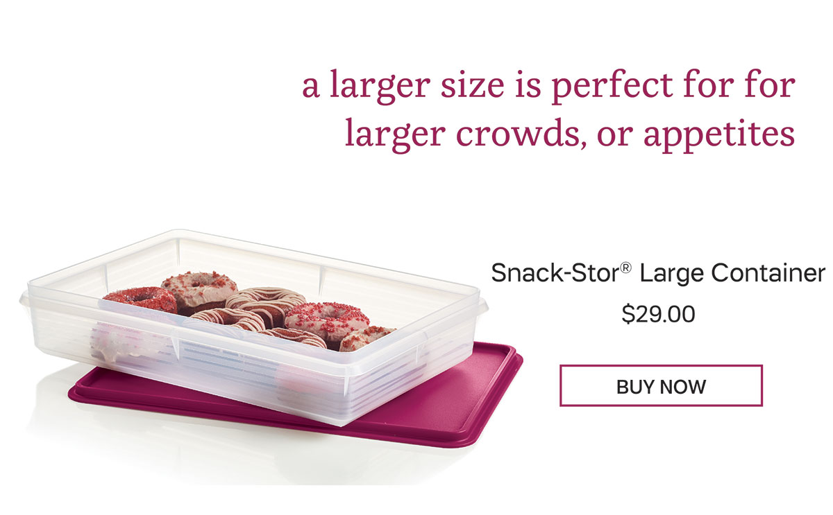Snack Stor Large Container
